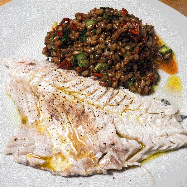 ماهی شانک (کخو)
