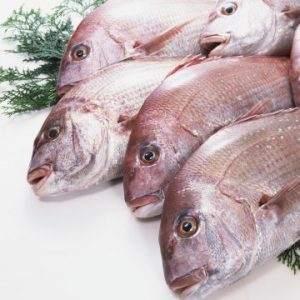 خرید ماهی