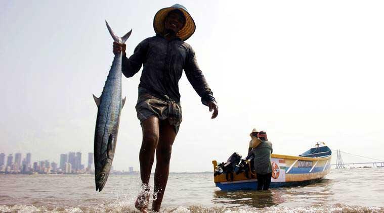 صید ماهی تازه